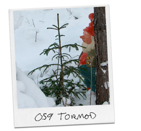 tree-tormod.jpg